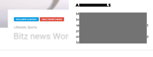 Bitz - News & Publishing Theme - 18